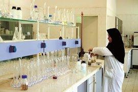 همکاری شرکت مس با 12 دانشگاه معتبر کشور