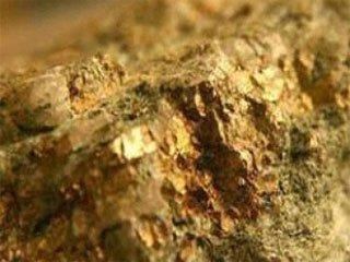 افزایش ۴۸ درصدی تولید طلایموته
